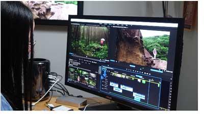 Premiere Pro CC2015.3